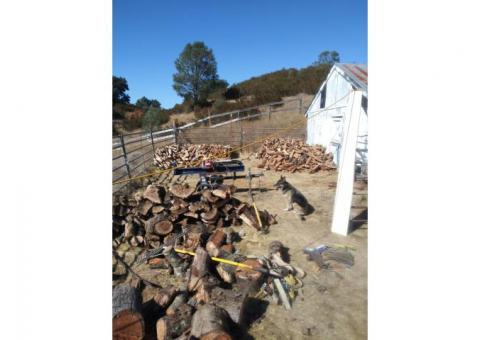 Dry/Seasoned Red Oak Firewood