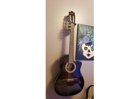 Beautiful Ibanez acoustic electric classical