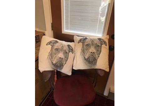 Decorative Pillows, PitBull image